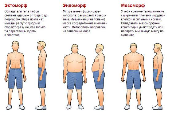numesti svorio ektomorfinis kūno tipas)