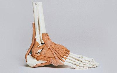 Instabilidade do tornozelo