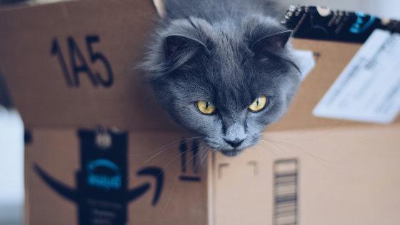 Amazonの検索結果で製品を上位に表示させる戦略を立てる前に知っておくべきこと