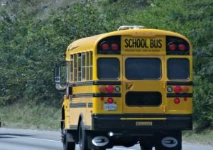 Die bekannten Schulbusse...
