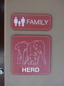 Bei den Elefanten zu Besuch...