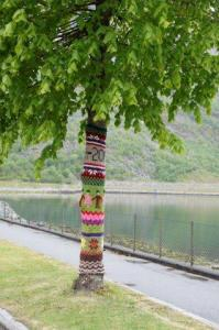 Hier haben die Bäume teils noch ihren Schal an...