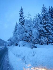 Wenn es nicht pflotschig ist , ist Schnee wunderschön!