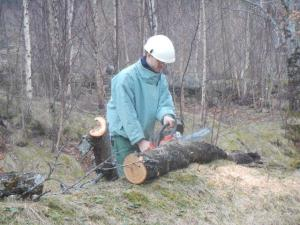 Ich finde Claudio hat das sehr gut gemacht, er wird ja sicher noch mehr Übung erhalten wenn wir Bäume fürs Feuerholz brauchen...