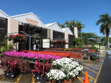 garden center home depot gigi-hawaii