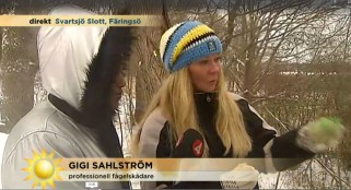 Gigi-Tv4-dec-2015-Fågelmatning-d
