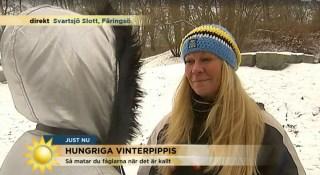 Gigi-Tv4-dec-2015-Fågelmatning-e