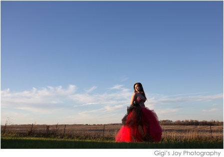 Gigi's Joy Photography: Union Grove Senior Photographer Racine prom