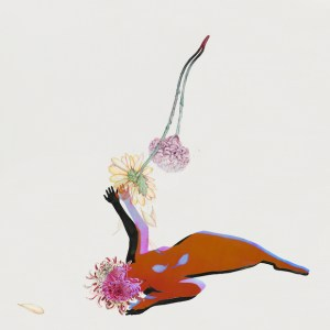 future islands - the far field artwork