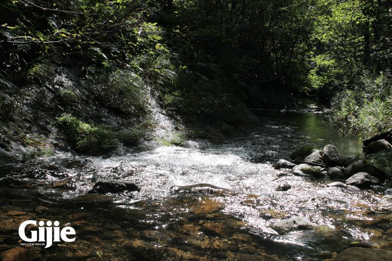 渓流釣りの風景