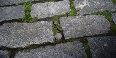 The cobblestones / Los adoquines