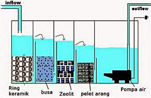 prinsip dasar sistem filter kolam koi - gilakoi