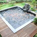 aerator kolam koi
