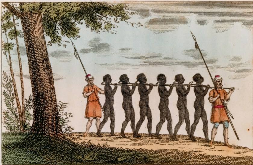 First African Slaves in America