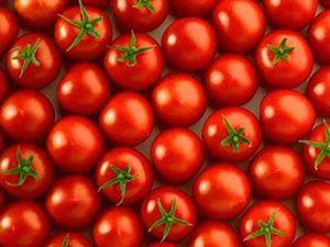 El mejor pan con tomate de Barcelona