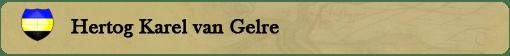 BENO BANNER SITUATIE HERTOGGELRE