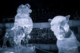 Le Roi Lion - Disneyland Ice Dreams - Photo : Gilderic