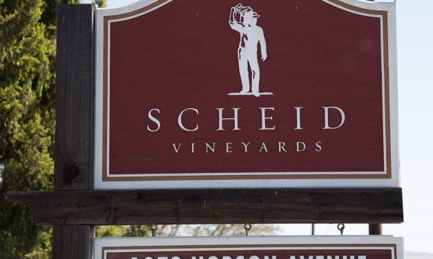 Scheid Winery