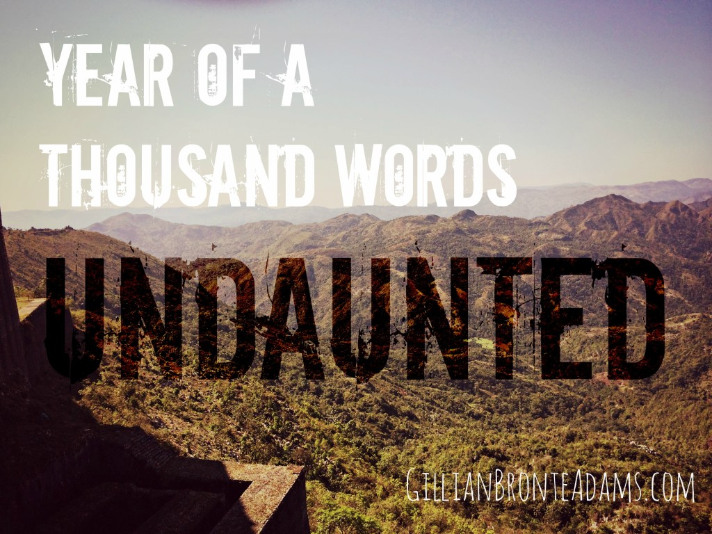 year-of-a-thousand-words-undaunted