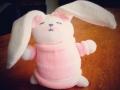 pinkBunny.jpg