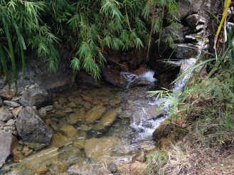One of the small waterfalls along the trail.