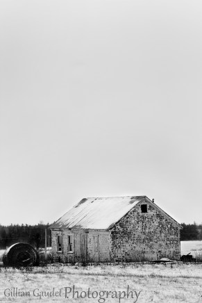 old barn bwwm