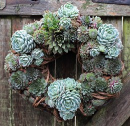 Make this fabulous wreath. Go to this  STEP BY STEP guide