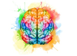 A creative and colorful rendition of a human brain.