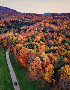fall leaves in Vermont with car on road