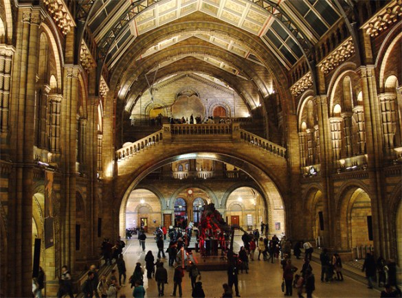 Hall, Natural History Museum