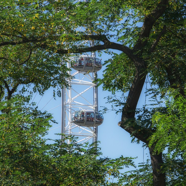London Eye, with trees