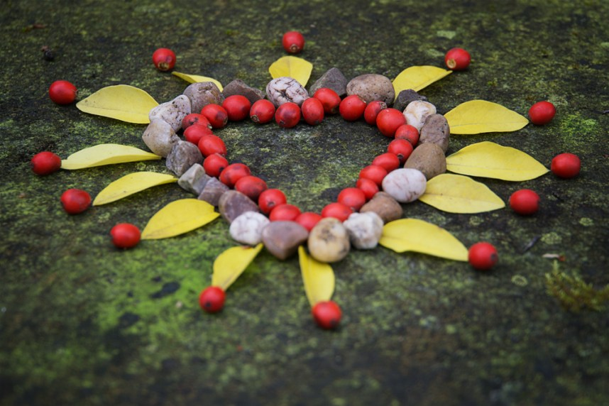 Heart made of berries, stones and leaves
