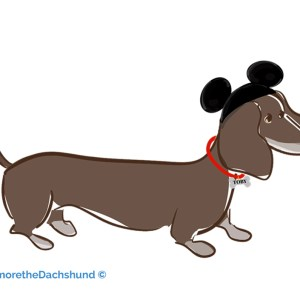 """Toby goes to Disneyland"""