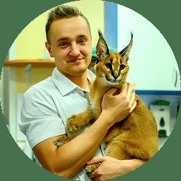 Бородяев Вячеслав Евгеньевич. Ветеринарный врач, специализирующийся в терапии, дерматологии и эндокринологии.
