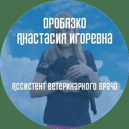 О докторе: Дробязко Анастасия Игоревна. Ассистент ветеринарного врача. Профессиональные интересы: ортопедия и травматология.
