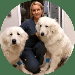 Иванова Марина Сергеевна. Ветеринарный врач. Эндоскопист, онколог.