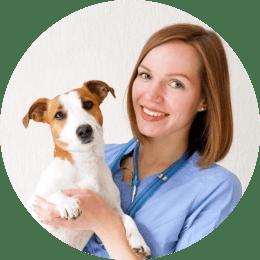 Кондакова Анна Дмитриевна. Ветеринарный врач, специализирующийся в анестезиологии и интенсивной терапии.