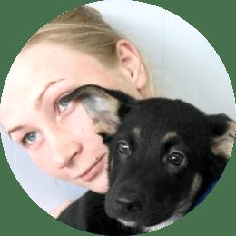 Кононенко Дарья Григорьевна. Ветеринарный врач, хирург, стоматолог, терапевт-инфекционист.