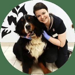 Седова Татьяна Юрьевна. Ветеринарный врач. Кардиолог, терапевт.