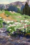 AcrossThe Stream_160818a