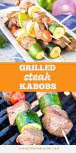 steak-kabobs-Pins-compressor