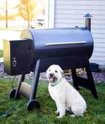 Dog in front of Traeger Eastwood 34