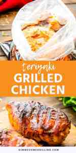 TERIYAKI CHICKEN Pins