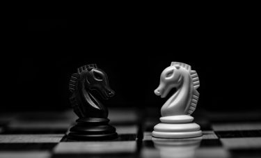 Two knights chess pieces on a chess board