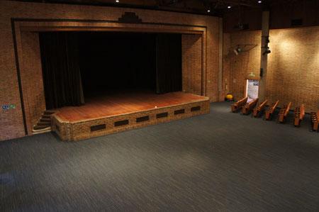 Nueva alfombra para el teatro gimnasio moderno - Cubre piso alfombra ...
