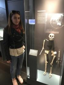 Natural History Museum (prirodoslovni muzej). Nalazi se u kvartu velikih muzeja, The Exhibition Road. Na slici je Lucy, najstariji pronađen kostur hominida. Lucy je pronađena u Etiopiji 1974.