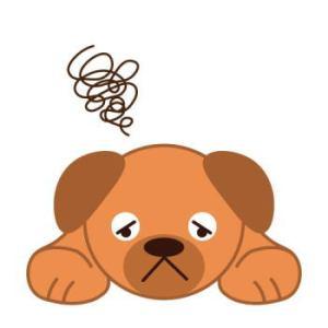 犬のストレスからくる行動の特徴とストレス解消法を紹介します