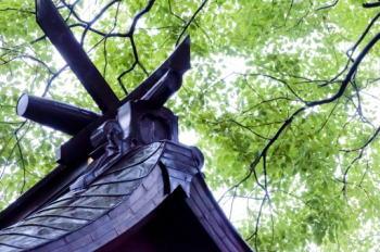 日本人なら知っておきたい神嘗祭とその前夜祭について詳しく解説します!