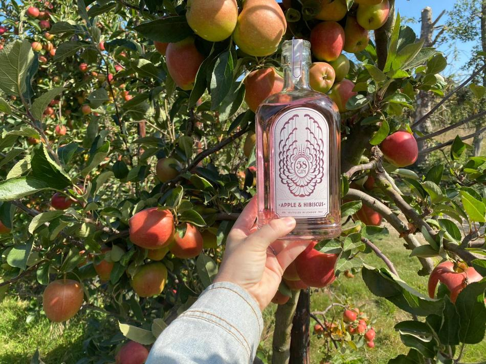 Loddington Farm Kent apples