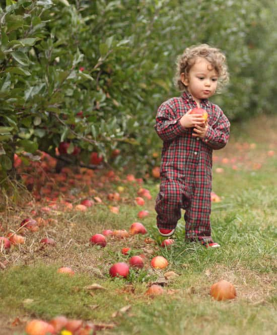 Apple Picking baby